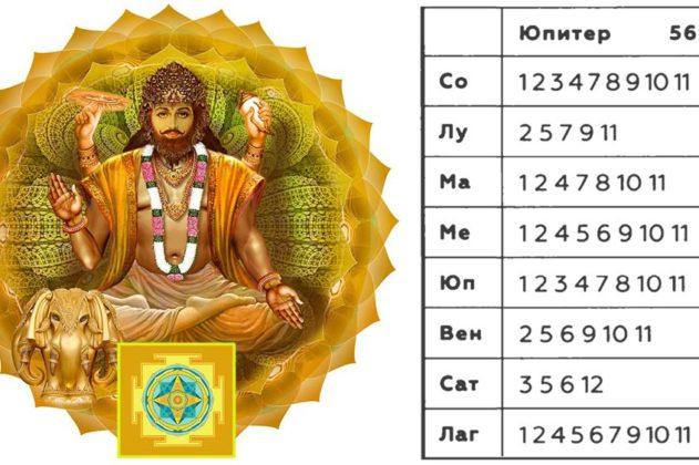 bav-guru